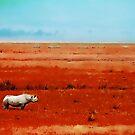 Rhino in Red with Blue Sky by byoGuru