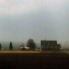 Cotton Farm by Carla Jensen