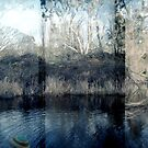 Loddon River Panoramic by jemimalovesbigted
