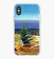 Lake Michigan Coast iPhone Case