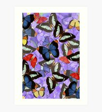 Composition With Echoed Butterflies #4 Art Print