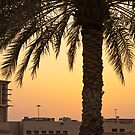 Sunset in Dubai by Cvail73
