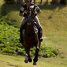 Galloping by Ann Heffron