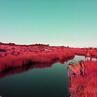 Madagascan River in Red by LoraMaze