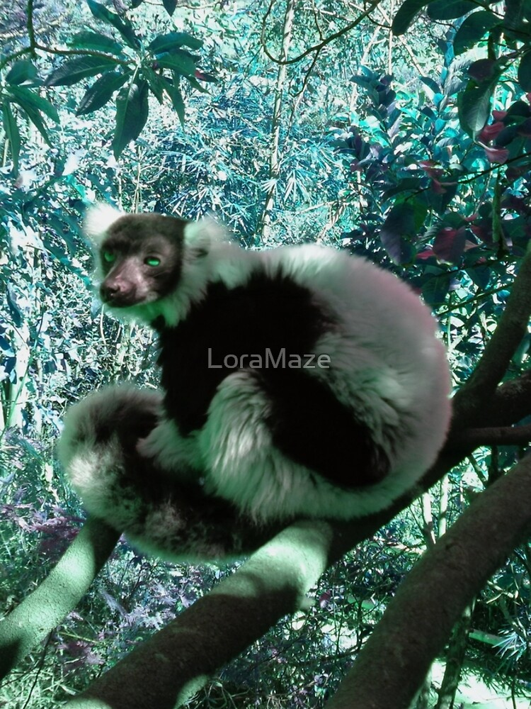 Black and White Ruffed Lemur in Turquoise by LoraMaze