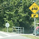 Caution: Cart Crossing by raindancerwoman