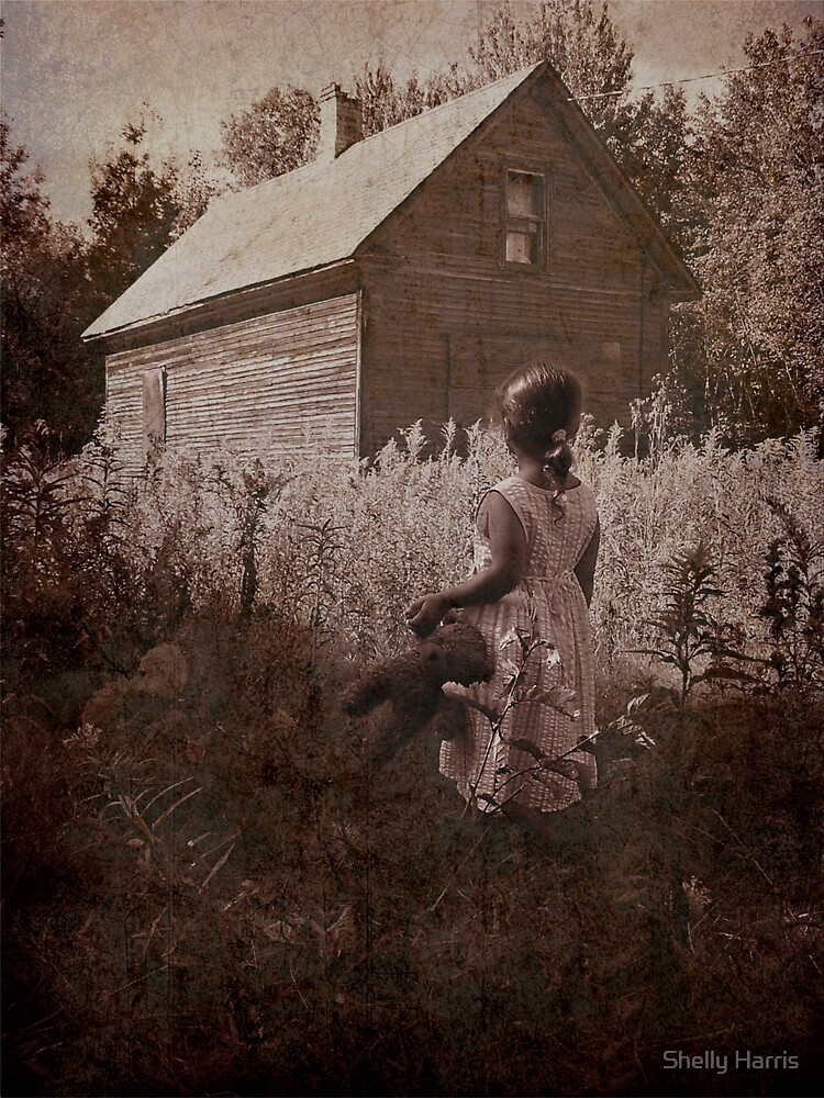 Old Dreams by Shelly Harris