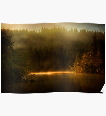 Misty Tranquility Poster