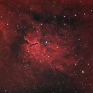 Emission nebula Sh2-86 and star open cluster NGC 6823 in the constellation Vulpecula by Lukasz Szczepanski