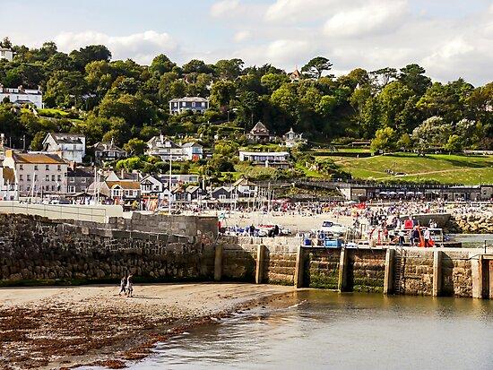 Coastal View by ScenicViewPics