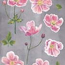 Japanese Anemone Flowers by Nic Squirrell