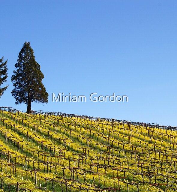 mustard flowers and wine I by Miriam Gordon