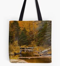 Autumn By a Woodland Stream Tote Bag