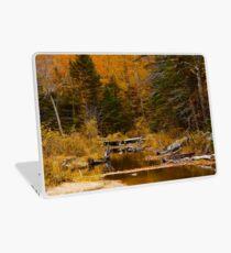 Autumn By a Woodland Stream Laptop Skin