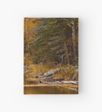 Autumn By a Woodland Stream Hardcover Journal