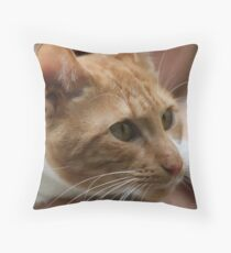 Close up wiskers  Throw Pillow