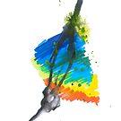 Rainbow Run by Jay Taylor