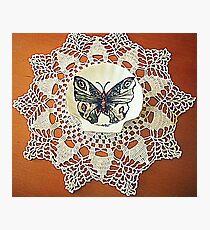 farfalla su merletto  Photographic Print