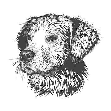 Dog by Seemushk