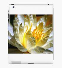 White waterlily (Nymphaea odorata rosea) iPad Case/Skin