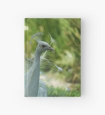 White Peacock close up Hardcover Journal