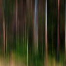 Deep Forest by Kitsmumma