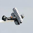 Bi-Plane by Karl R. Martin