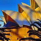 Opera House textures by scottsphotos
