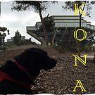 UCSD's Kona  by mayachrome