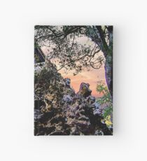 Empresses Summer Palace Hardcover Journal