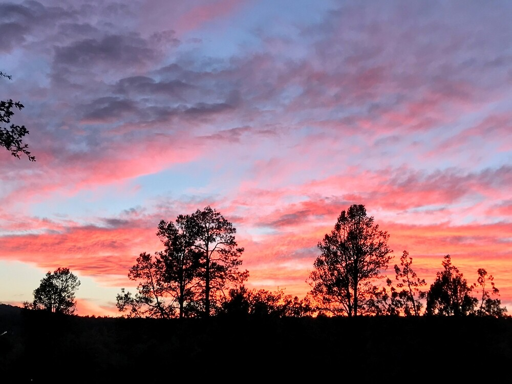 Firey Pink and Purple Sunset, Arizona  by EricaRobbin