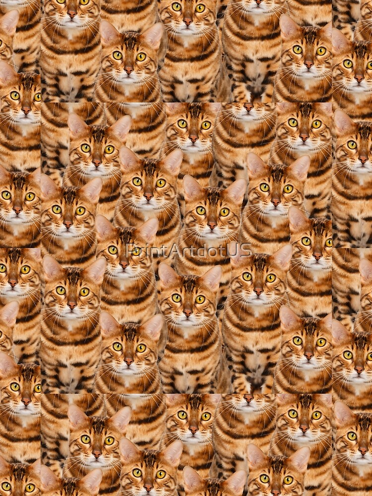 Espectacular diseño de gatito de Bengala de PrintArtdotUS