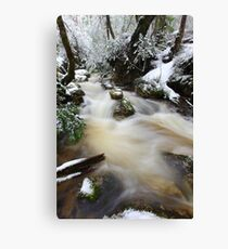 Winter at Crator Creek, Cradle Mountain National Park, Tasmania, Australia Canvas Print