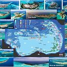«Mapa  los Roques  Zonificado» de Org Bluewater