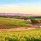 McLaren Vale Magic    (PC) by Ray Warren