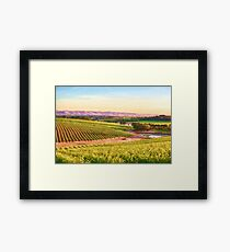 McLaren Vale Magic    (PC) Framed Print