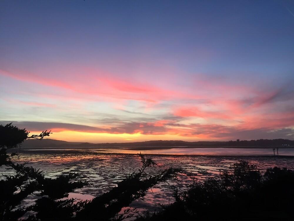 Sonoma Coast State Park Sunset, California, USA by EricaRobbin