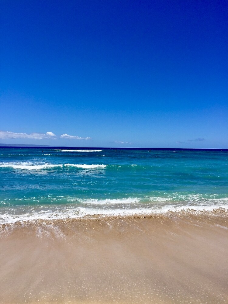 Maui Sandy Beach by EricaRobbin