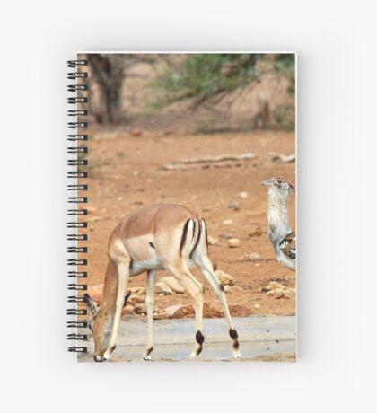 LADIES FIRST ! IMPALA & KORI BASTARD - Ardeotis kori Spiral Notebook
