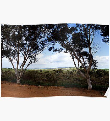 Scenic view between Eneabba and Badgingarra Poster