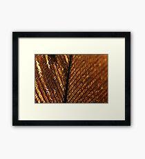 Broken Quill  Framed Print