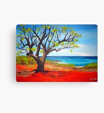 Broome Views - western australia Canvas Print