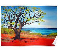 Broome Views - western australia Poster