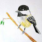 Bird  by RyanLoesch