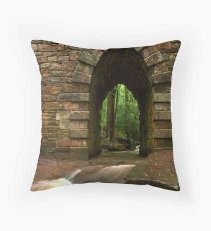 poinsett bridge Throw Pillow