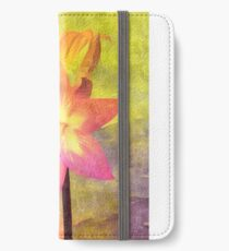 Painted Naked Lady iPhone Wallet/Case/Skin