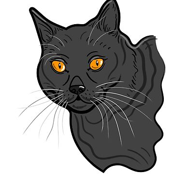 Black Cat Pet Portrait ( White background ) by AdamRegester