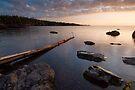 Gooseberry Falls State Park, Sunrise. by Michael Treloar