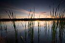 Pelican Lake. by Michael Treloar