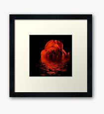 Reflection of a Bronze Rose Framed Print